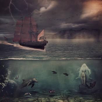 Sail into Dusk by Kim Zier