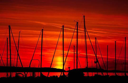 Sail Silhouettes by Darren Bradley