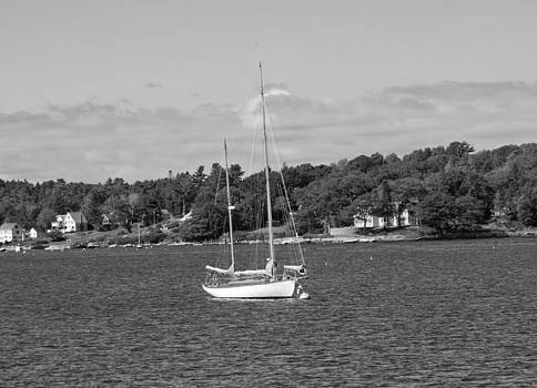 Sailboat in Boothbay Harbor - Black and White by Kristen Mohr