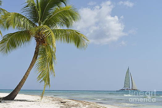 Sailboat passing by tropical beach by Sami Sarkis