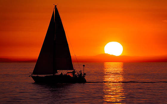 Sailboat Sunset by Alexis Birkill