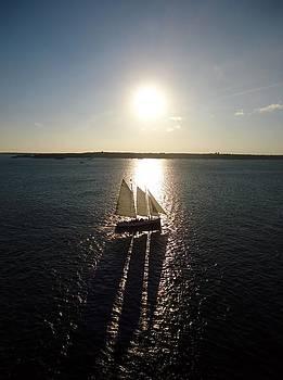Sailboat With Shadow by Rita Tortorelli