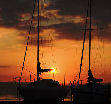 Sailboats at sunset by Tony Reddington