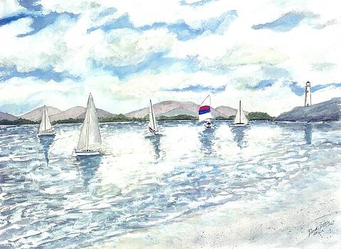 Sailboats by Derek Mccrea