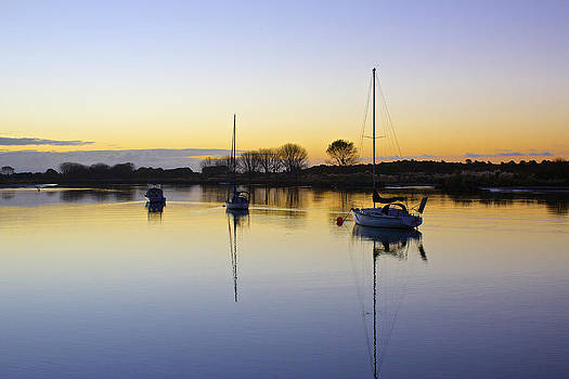 Venetia Featherstone-Witty - Sailboats in Whakatane at Sunset