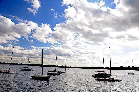 Sailboats on Lake Calhoun by Lonnie Paulson