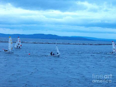 Sailboats on Lake Champlain by Lisa J Gifford