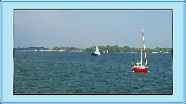 Sailboats by Ted Mahy