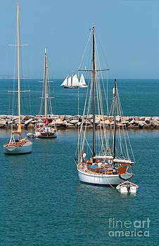 Michelle Wiarda - Sailing Away