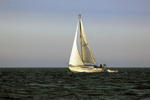 Sailing by by Grant Glendinning