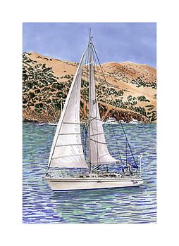 Jack Pumphrey - Sailing Catalina Island Sailing Sunday