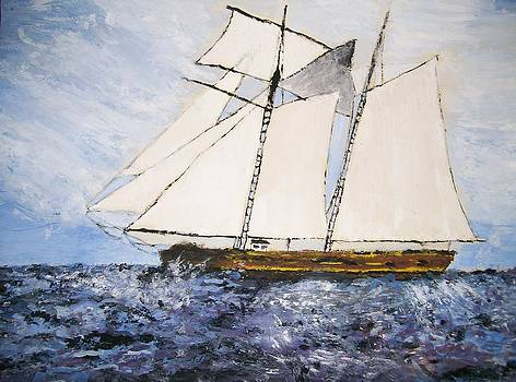 Shan Ungar - Sailing Tall Ship