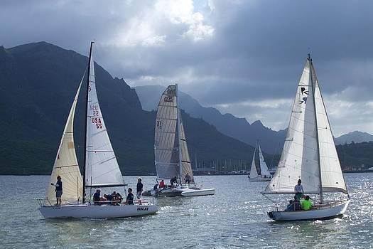 Sailing in the Light by Bonita Hensley