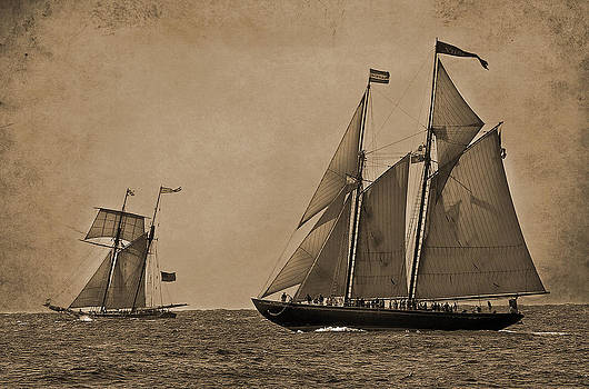 Sailing Into The Past by Liz Mackney