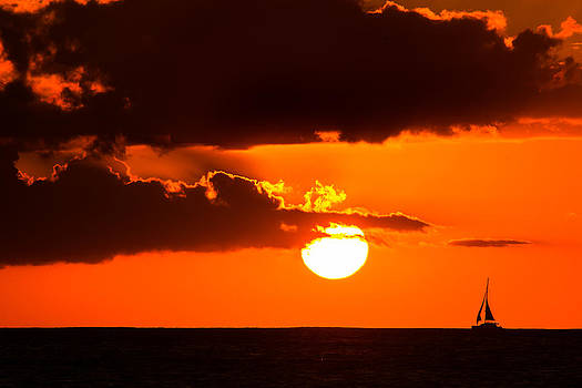 Sailing into the Sun by Robert Bishop