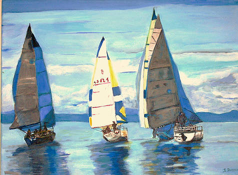 Sailing Regatta at Port Hardy by Teresa Dominici