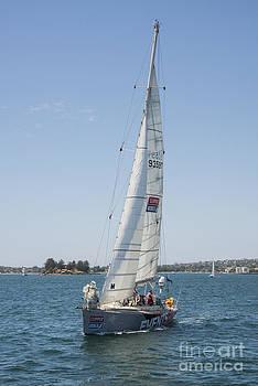 Bob Phillips - Sailing Sydney Harbour