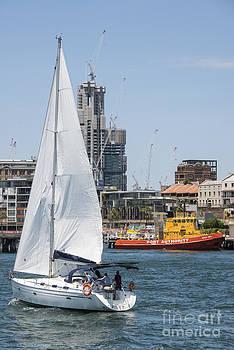 Bob Phillips - Sailing the Harbour