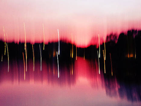 Sailor's Delight by Stephanie Selby