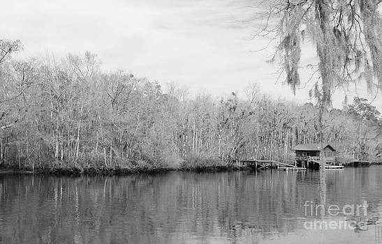 Saint Mary's River by Joanne Askew