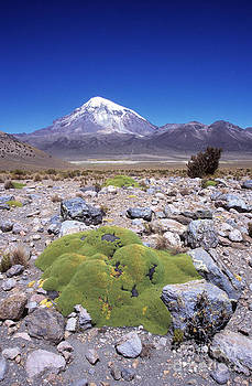 James Brunker - Sajama Volcano and Altiplano