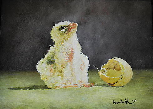 Saker Falcon Chick next to shell by Erna Goudbeek
