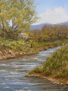 Salgir river.Spring. by Yaroslav Kuvshinov