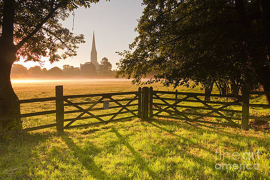 Salisbury cathedral at dawn. by Julian Elliott