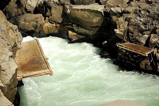 Salmon Fishing Platforms by Mamie Gunning