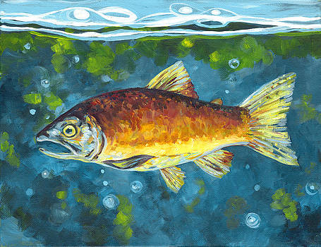 Salmon II by Peggy Wilson