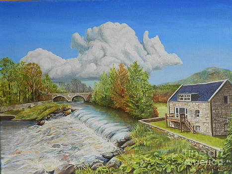 Salmon Step by David Paterson