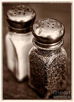 Salt and Pepper Shaker Sepia by Iris Richardson
