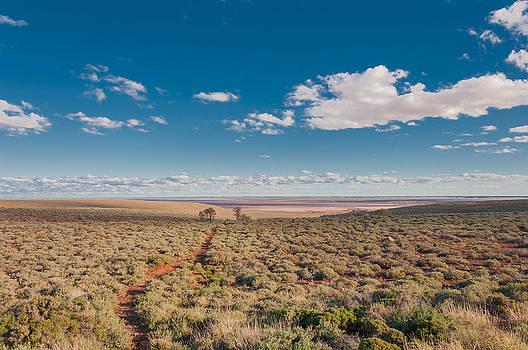 Salt Flats Trail by Ross Carroll