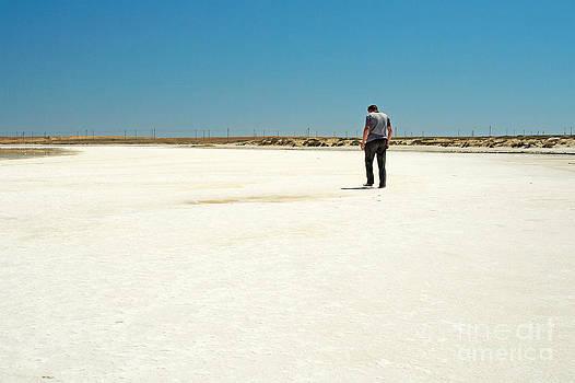 Salt Lake. by Alexandr  Malyshev