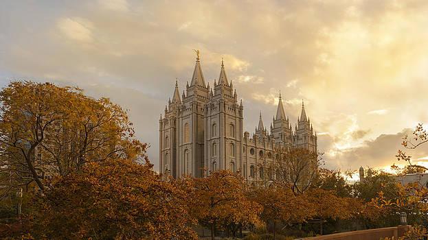 Dustin  LeFevre - Salt Lake Temple Ultra High Resolution