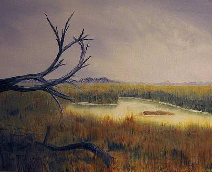 Salt Marsh by Robert Benton