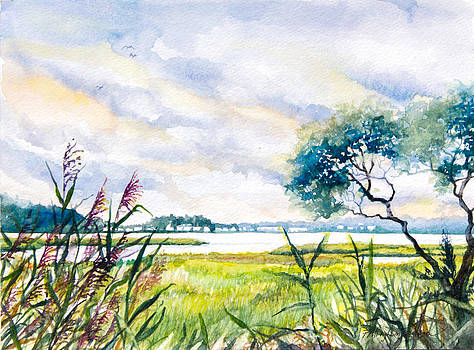Salt Marshes Delaware by Patricia Allingham Carlson
