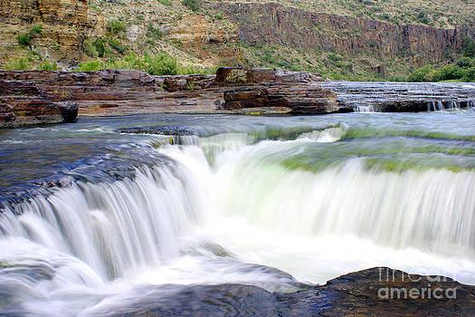 Douglas Taylor - SALT RIVER WATERFALL