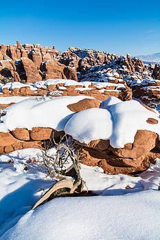 Robert VanDerWal - Salt Valley Overlook