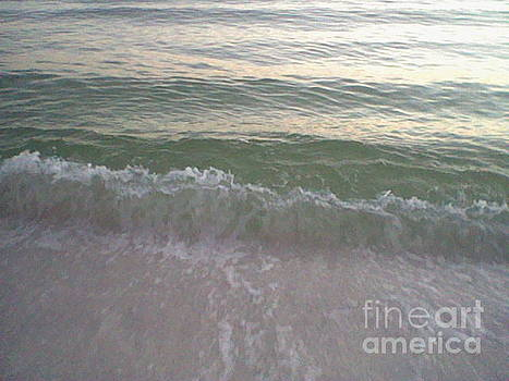 Salty Waves by Leslie Fagan