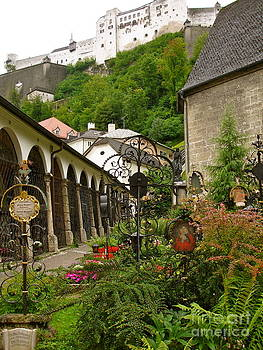Danielle Groenen - Salzburg Cemetery