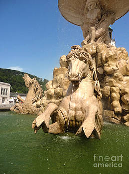 Gregory Dyer - Salzburg Horse Fountain