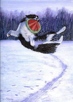 Sammy's Frisbee Jump by Fran Brooks