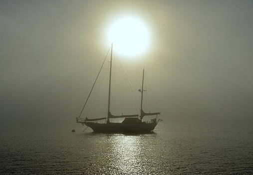 San Diego Bay by Eleu  Tabares