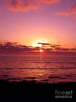 Ian Donley - San Diego Jan 06