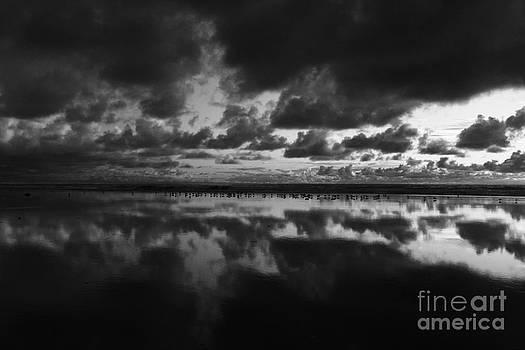 Cardiff Shorebird Mirror by John F Tsumas