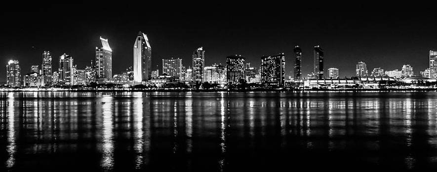 San Diego Skyline by Robert  Aycock