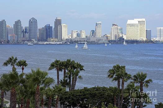 Sophie Vigneault - San Diego skyline