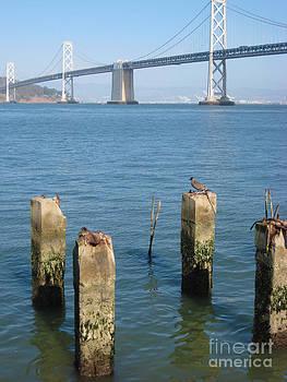 San Francisco Bay Bridge by Willie Chea