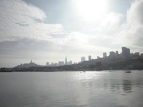 San Francisco Cityscape by Anastasia Trekles